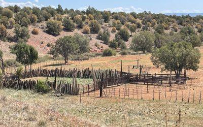 Elk Springs Ranch